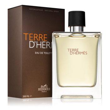 عطر ادکلن هرمس تق هرمس Hermes Terre d'Hermes 100 ml